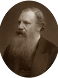 Henry Baker Tristram, Ma, Frs, Lld, Canon of Durham, 1883 Photographic Print by  Lock & Whitfield