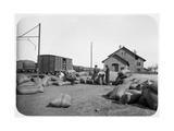 Soldiers of the French Foreign Legion at a Railway Yard, Syria, 20th Century Giclee Print
