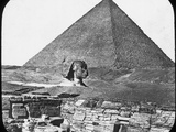 Great Sphinx of Giza, Egypt, C1890 Photographic Print by  Newton & Co