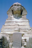 The Great Sphinx of Giza, Giza Plateau, Egypt Photographic Print