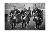 Pipers of the 1st Scots Guards, 1896 Giclee Print by  Gregory & Co