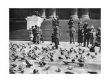 Pigeons in Trafalgar Square, London, 1926-1927 Giclee Print