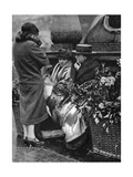Flower Sellers, Piccadilly Circus, London, 1926-1927 Giclee Print