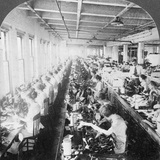 Sewing Room in a Large Shoe Factory, Syracuse, New York, USA, Early 20th Century Photographic Print