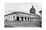 Calle Palmas, Asuncion, Paraguay, 1911 Giclee Print