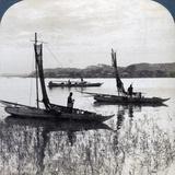 Fishing Boats Coming Home at Sunset, Near Yokohama, Japan, 1904 Photographic Print