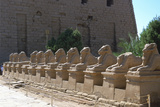 Line of Ram-Headed Sphinxes, Temple of Rameses Ii, Karnak, Egypt, 13th Century Bc Photographic Print