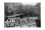 Rafts on the Tebicuary-Mi River, Paraguay, 1911 Giclee Print