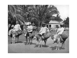 On the Way Home from Market, Jamaica, C1905 Giclee Print by Adolphe & Son Duperly