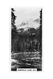 Emerald Lake Near Field, British Columbia, Canada, C1920S Giclee Print