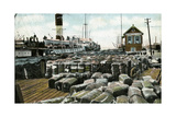 Cotton Wharves, New Orleans, Louisiana, USA, Early 20th Century Giclee Print