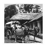 Leaving the Dak Bungalow for a 'Bile-Gharry, Belgaum District, Southern India, 1900s Giclee Print