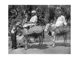 Off to the Jail, Jamaica, C1905 Giclee Print by Adolphe & Son Duperly