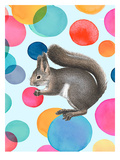 Happy Squirrel Prints by  Roccocola