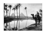 An Oasis Near Cairo, Egypt, C1920S Giclee Print