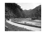 Road to Bog Walk, Jamaica, C1905 Giclee Print by Adolphe & Son Duperly