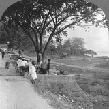 River Front and Bank, Bhamo, Burma, 1908 Reproduction photographique