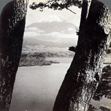 Mount Fuji, Seen from the Northwest, Through Pines at Lake Motosu, Japan, 1904 Photographic Print by  Underwood & Underwood