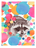 Cheery Raccoon Prints by  Roccocola