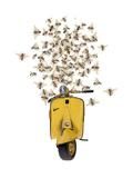 Sweet As A Honey-Vespa Poster par  Roccocola