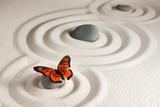 Zen Rocks with Butterfly Fotografisk trykk av Olga Lyubkin