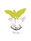 Bird Art by  Roccocola