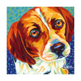 Dogs in Color II Prints by Carolee Vitaletti