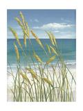 Summer Breeze I Print by Tim O'toole