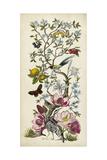 Chinoiserie Natura II Prints by Naomi McCavitt