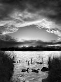 Swimming Pool Fotografie-Druck von Martin Henson