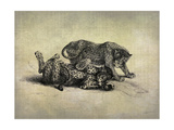 Big Cats II Premium Giclee Print by John Butler