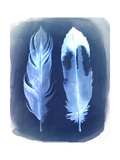 Feather Negatives II Premium Giclee Print by Grace Popp