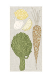Contour Fruits and Veggies VI Prints by  Vision Studio