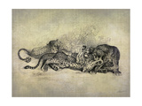 Big Cats I Prints by John Butler