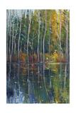 Pine Reflection II Art by Tim O'toole