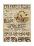 Vintage Circus IV Posters by Grace Popp