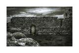 Irish Castle Views V Plakat av Richard James