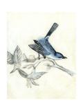Rustic Aviary III Premium Giclee Print by Naomi McCavitt