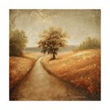 Cinnamon Road I Premium Giclee Print by Michael Marcon