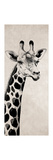 Giraffe I Giclee Print by Vivien Rhyan