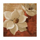Midday Magnolias I Premium Giclee Print by Lanie Loreth