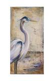 Blue Heron I Premium Giclee Print by Patricia Quintero-Pinto