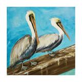 Pelicans on Post II Reproduction giclée Premium par Julie DeRice