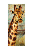 New Safari on Teal I Premium Giclee Print by Patricia Quintero-Pinto