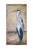 Blue Heron II Premium Giclee Print by Patricia Quintero-Pinto
