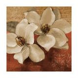 Midday Magnolias II Premium Giclee Print by Lanie Loreth