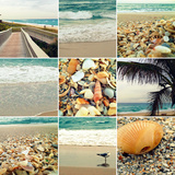 Shell Beach (9 Patch) Photographic Print by Lisa Hill Saghini