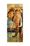 New Safari on Teal II Premium Giclee Print by Patricia Quintero-Pinto