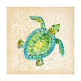 Sealife Turtle Premium Giclee Print by Julie DeRice