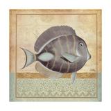 Vintage Fish II Giclee Print by Elizabeth Medley